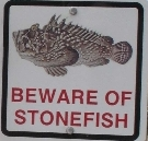 Beware of Stonefish - kl expo by Wanda Michalak 29.11.2014