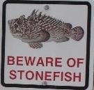Beware of Stonefish - kl expo by Wanda Michalak 29.11.2014